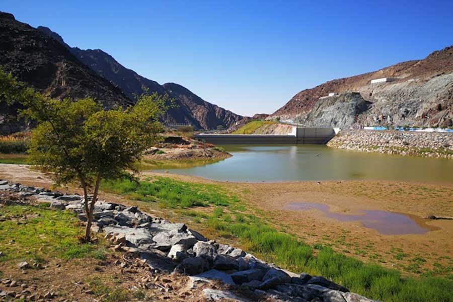 وادي شوكة