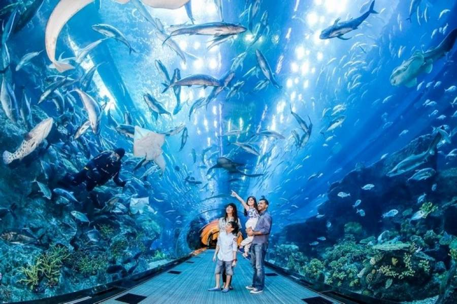 The Dubai Aquarium & Underwater Zoo