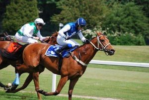 Dubai Shopping Festival: horse race
